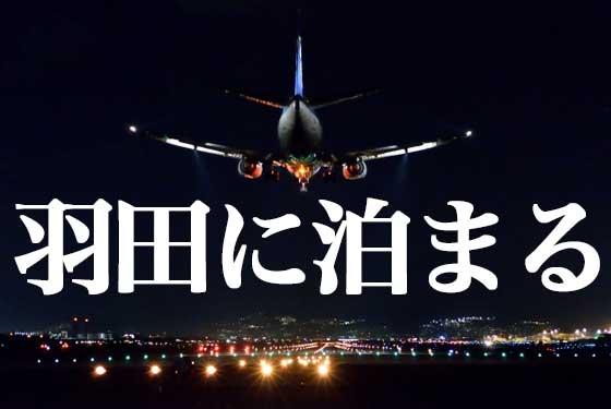 羽田のホテル|羽田空港に近くておすすめのホテルの画像