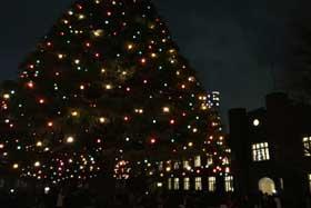 素敵な「立教大学」イルミネーションへの行き方|クリスマス