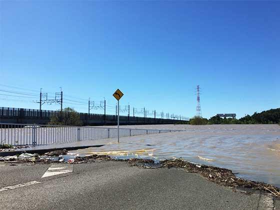 令和元年台風19号により水が溢れた荒川